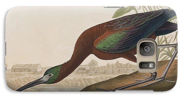 Glossy Ibis Galaxy S7 Case by John James Audubon