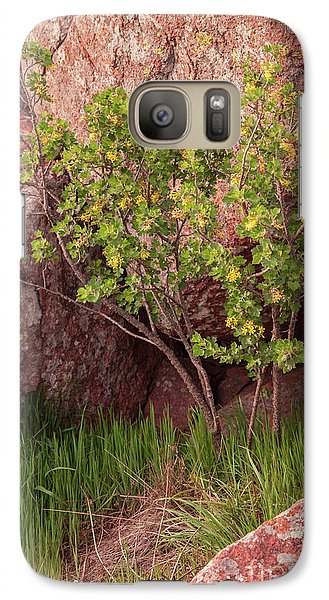 Galaxy Case featuring the photograph Hidden by Iris Greenwell