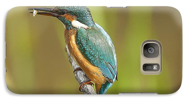 Kingfisher Galaxy S7 Case