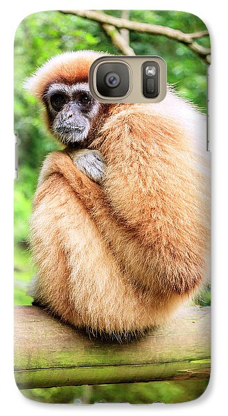 Galaxy Case featuring the photograph Lar Gibbon by Alexey Stiop