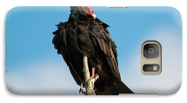 Vulture Galaxy S7 Case - Looking For A Meal by Mike Dawson