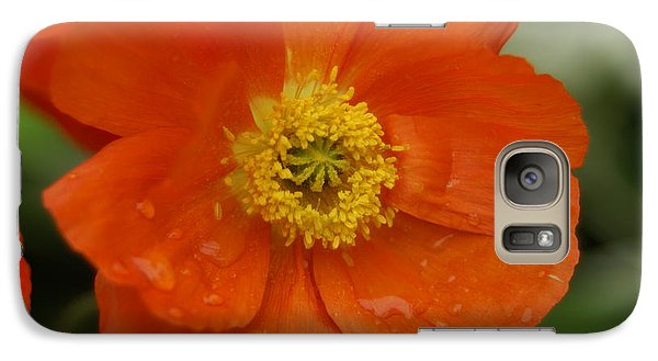 Galaxy Case featuring the photograph Poppy by Heidi Poulin