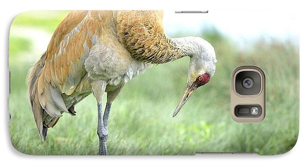 Galaxy Case featuring the photograph Sandhill Crane by Kathy King