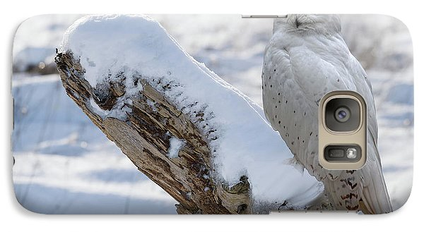 Galaxy Case featuring the photograph Snowy Owl by Jim  Hatch