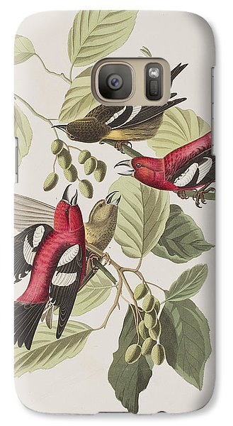 White-winged Crossbill Galaxy S7 Case by John James Audubon