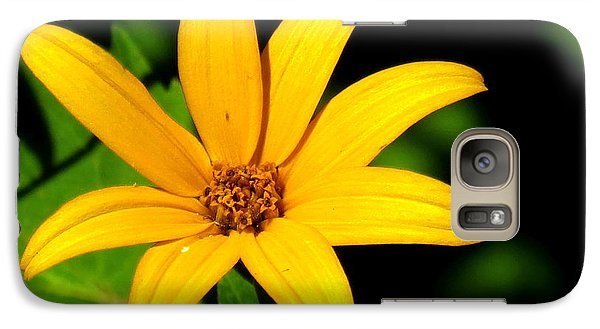 Galaxy Case featuring the photograph Wild Flower by Eric Switzer