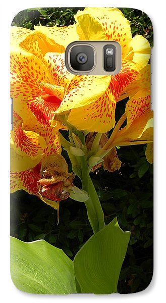 Galaxy Case featuring the photograph Yellow Canna Lily by Terri Mills