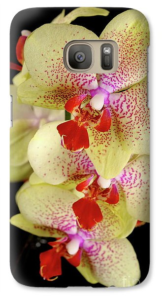Galaxy Case featuring the photograph Yellow Orchid by Dariusz Gudowicz