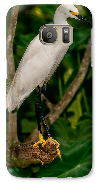 Galaxy Case featuring the photograph White Egret by Christopher Holmes