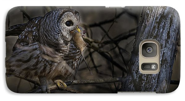 Galaxy Case featuring the photograph Barred Owl In Pine Tree by Michael Cummings