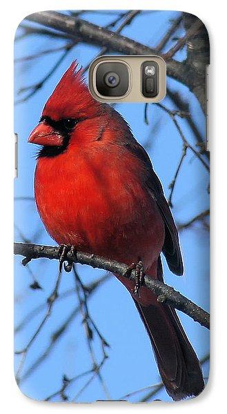 Northern Cardinal Galaxy S7 Case