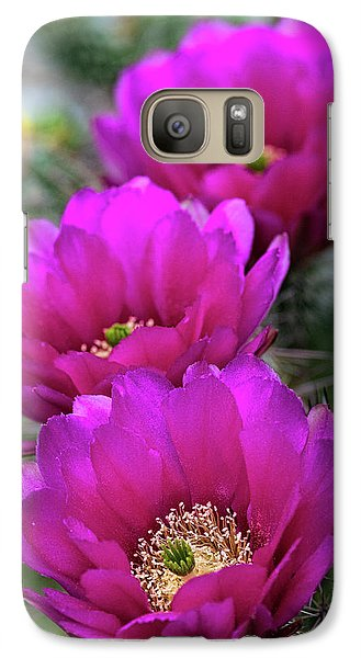 Galaxy Case featuring the photograph Pink Hedgehog Cactus  by Saija Lehtonen