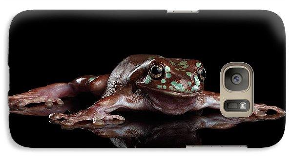 Australian Green Tree Frog, Or Litoria Caerulea Isolated Black Background Galaxy S7 Case by Sergey Taran