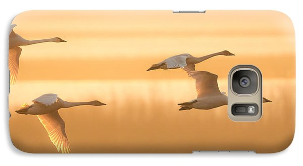 Galaxy Case featuring the photograph 4 Swans by Kelly Marquardt