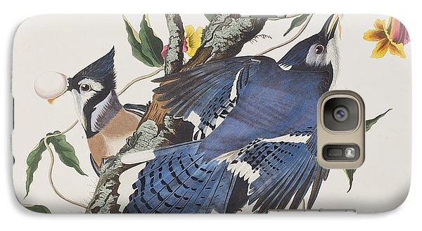 Blue Jay Galaxy S7 Case