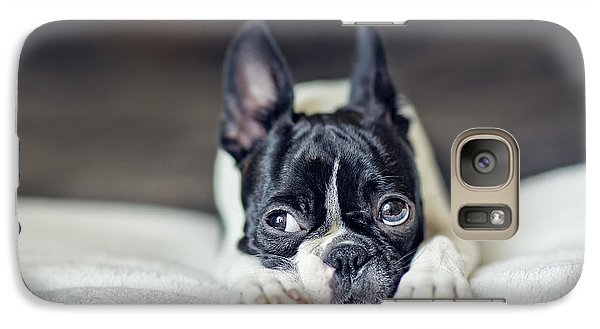 Boston Terrier Puppy Galaxy S7 Case by Nailia Schwarz