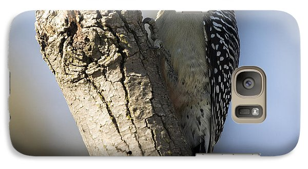Red-bellied Woodpecker Galaxy S7 Case by Ricky L Jones