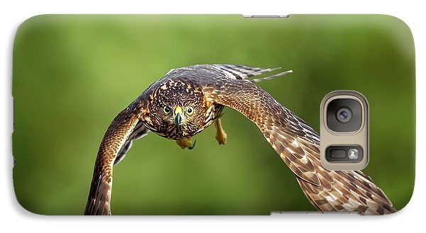 Red-tailed Hawk Galaxy S7 Case