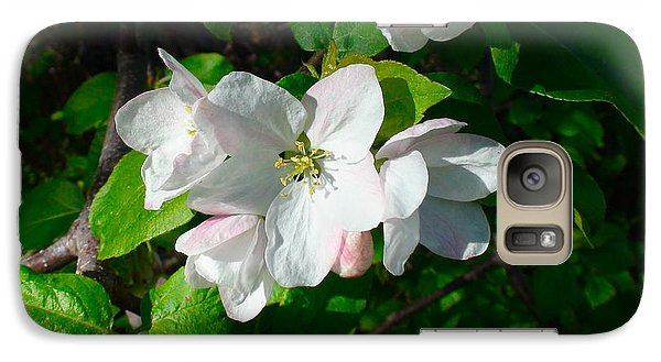 Galaxy Case featuring the photograph Apple Blossoms by Johanna Bruwer