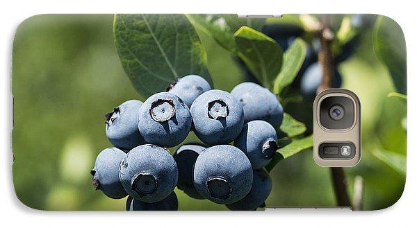 Blueberry Bush Galaxy S7 Case