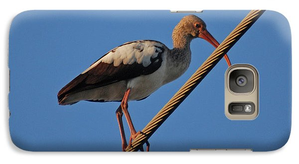 Galaxy Case featuring the photograph 8- Brown Ibis by Joseph Keane