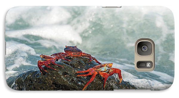 Galaxy Case featuring the photograph Sally Lightfoot Crab On Galapagos Islands by Marek Poplawski