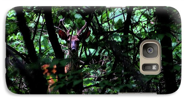 Galaxy Case featuring the photograph A Buck Peers From The Woods by Bruce Patrick Smith