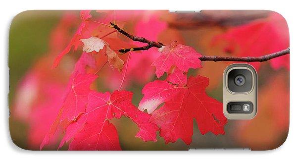 A Flash Of Autumn Galaxy S7 Case