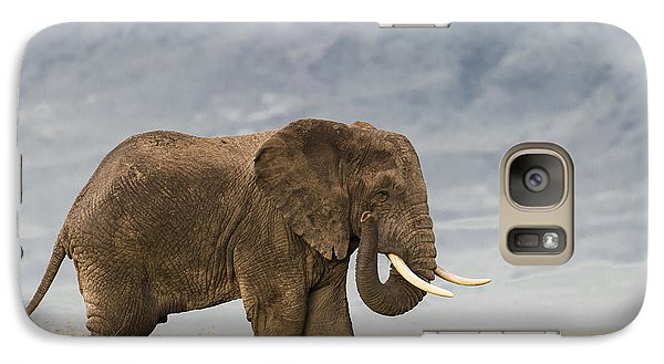 Galaxy Case featuring the photograph A Gentle Giant by Sandra Bronstein
