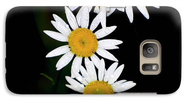 Galaxy Case featuring the digital art A Group Of Wild Daisies by Chris Flees