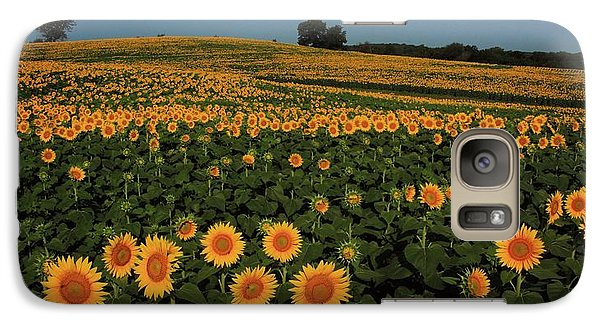 Galaxy Case featuring the photograph A Lot Of Birdseed  by Chris Berry