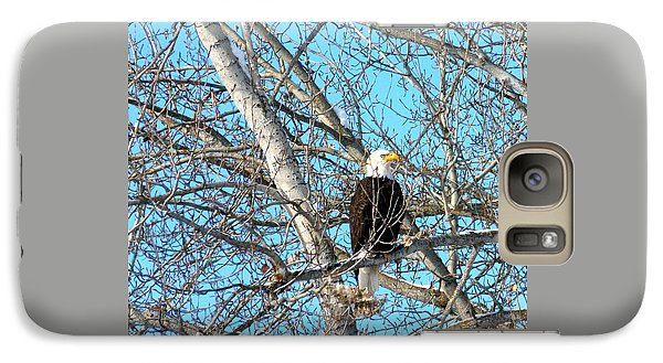 Galaxy Case featuring the photograph A Majestic Bald Eagle by Will Borden