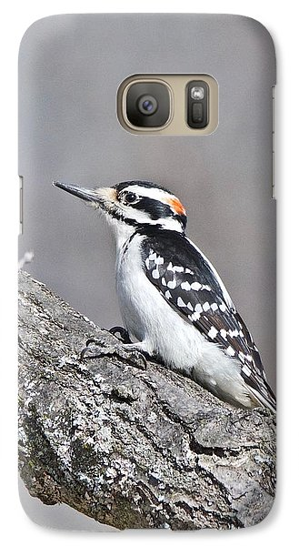 Galaxy Case featuring the photograph A Male Downey Woodpecker 1120 by Michael Peychich