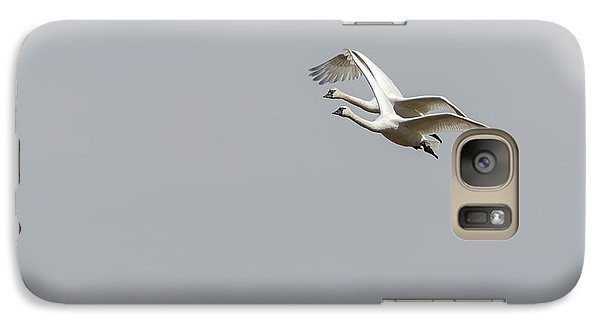 Galaxy Case featuring the photograph A Pair Of Swans 2017-1 by Thomas Young