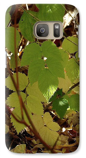Galaxy Case featuring the photograph A Plant's Various Colors Of Fall by DeeLon Merritt