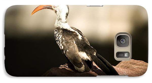 A Red-billed Hornbill At The Lincoln Galaxy S7 Case