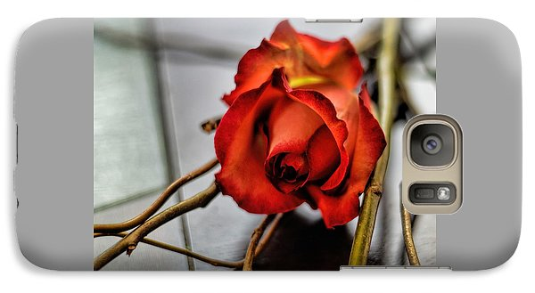 Galaxy Case featuring the photograph A Rose On Bamboo by Diana Mary Sharpton