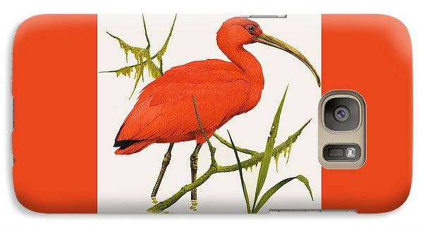 A Scarlet Ibis From South America Galaxy S7 Case by Kenneth Lilly