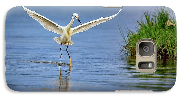 A Snowy Egret Dip-fishing Galaxy S7 Case by Rick Berk