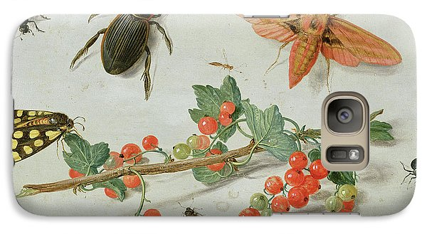 A Sprig Of Redcurrants With An Elephant Hawk Moth, A Magpie Moth And Other Insects, 1657 Galaxy S7 Case