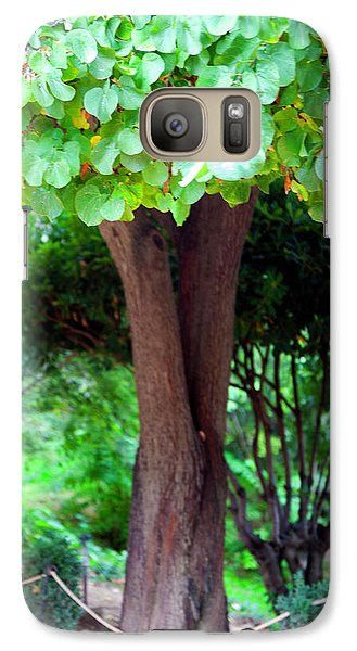 Galaxy Case featuring the photograph A Tree Lovelier Than A Poem by Madeline Ellis