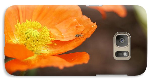 Galaxy Case featuring the photograph A Visitor by Heidi Poulin