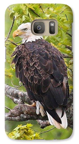 Adult Bald Eagle Galaxy S7 Case