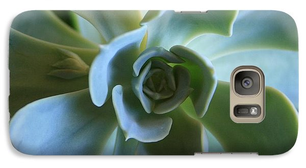 Galaxy Case featuring the photograph Aeonium by Marna Edwards Flavell