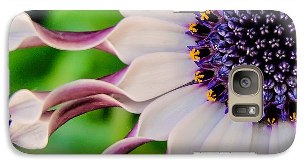 Galaxy Case featuring the photograph African Daisy Squared by TK Goforth