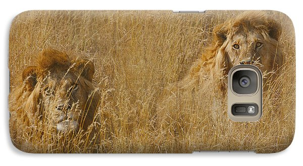Galaxy Case featuring the tapestry - textile African Lion Brothers by Kathy Adams Clark