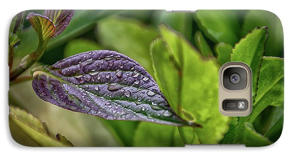 After The Rain Galaxy S7 Case