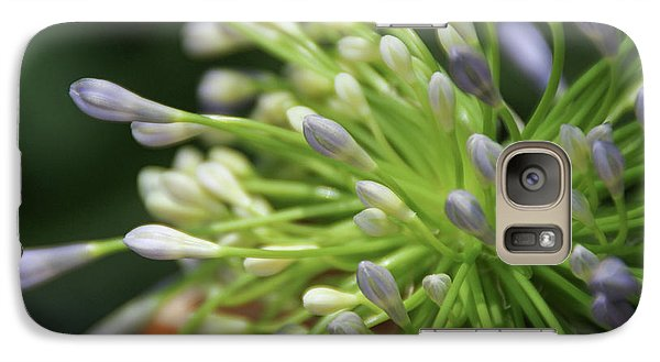 Galaxy Case featuring the photograph Agapanthus, The Spider Flower by Yoel Koskas