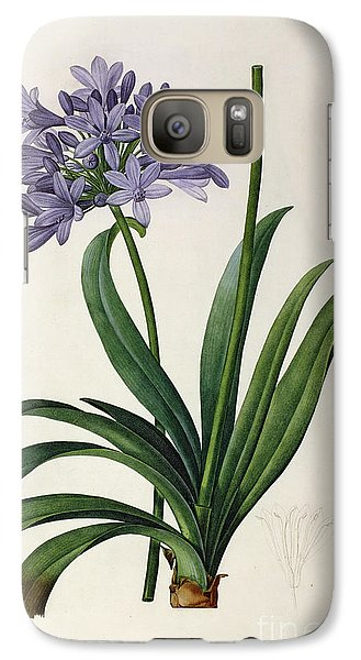 Lily Galaxy S7 Case - Agapanthus Umbrellatus by Pierre Redoute