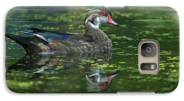 Galaxy Case featuring the photograph Aix Sponsa.. by Nina Stavlund
